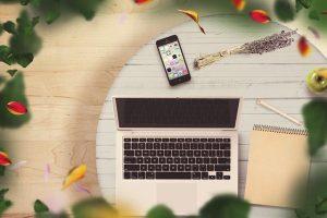 Ingin Bisnis Jualan Tanaman Online? Lakukan 4 Tips Utama Ini